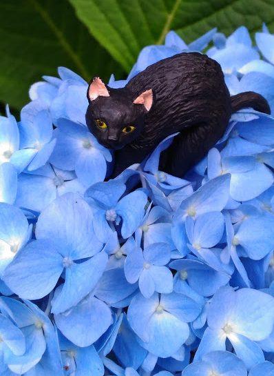 黒猫 あじさい