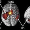 心・脳・機械(18)人の脳を覗く〜脳機能画像