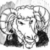 オオカミになった羊(後編29)by クレーン謙