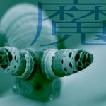【 生物学魔談 】魔の寄生・ロイコクロリディウム(1)