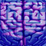【 脳科学魔談1 】左脳ダウン