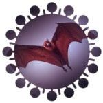 【 生物学魔談 】魔のウィルス(9)