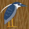 鳥の民泊(その3 最終回)by 芳納珪