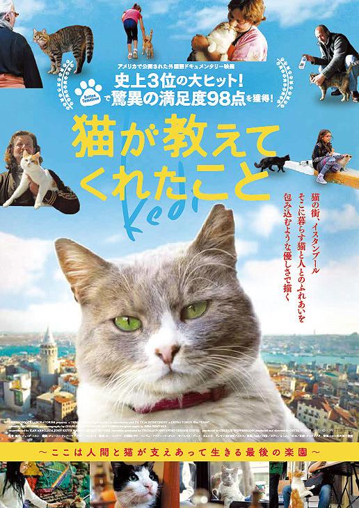 トルコ映画 イスタンブール 猫が教えてくれたこと 監督:ジェイダ・トルン