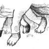 オオカミになった羊(後編17)