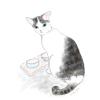 発狂記念猫〜進化論への一石〜