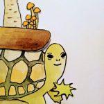 盆栽カメのきのこ盆栽の秘密・きのこ草の育て方