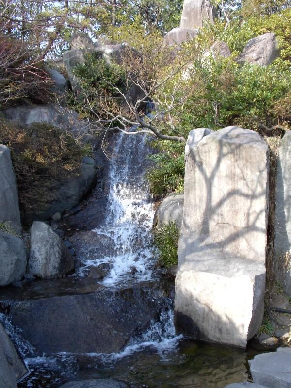 目白庭園の滝 2007年