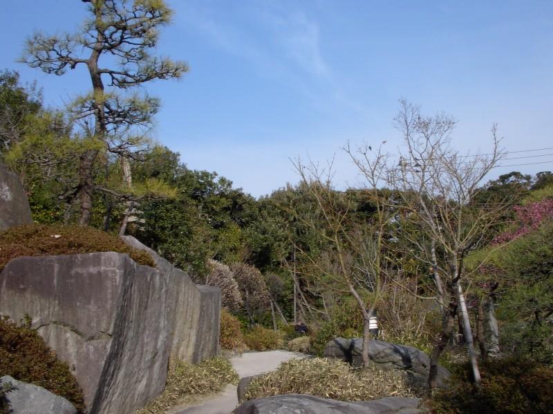 目白庭園 2007年3月撮影