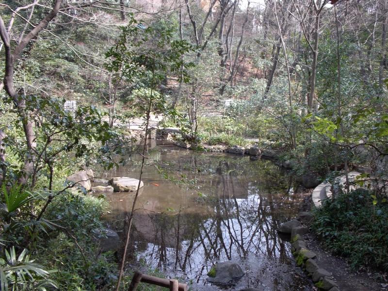 下落合 おとめ山公園 2007