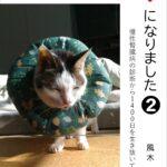 猫の好む室温には個体差がある