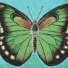「緑色のアイツ」試し読み~『五つの色の物語』(ホテル暴風雨絵画文芸部)より