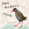 ぐっちーさんと話そう<3>  飛ぶ鳥を落とす進化の妙味